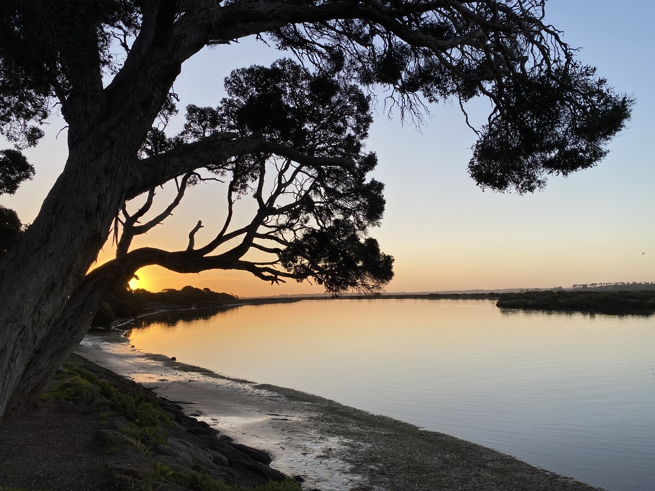 Ros Bandt and Vicki Hallett – Listening to the Barwon River in Australia