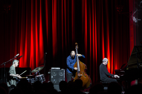 The Necks. Photo credits: Alan Murphy