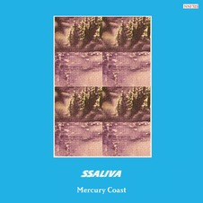 Ssaliva - Mercury Coast